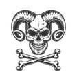 vintage monochrome devil skull vector image vector image
