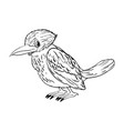 animal doodle for little bird vector image vector image