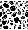 berries pattern black vector image