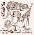 collection of hand drawn savanna animals vector image vector image