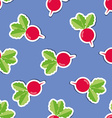 radish pattern Seamless texture with ripe radishes vector image