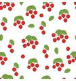 rose hip flat seamless pattern on white vector image