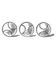 three balls vintage vector image vector image