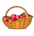 wicker basket filled with ripe red apples isolated vector image vector image