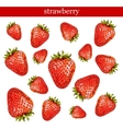 Fresh strawberries isolated on white background vector image