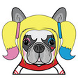 kids style cute french bulldog female superhero vector image