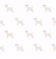 puppies dog seamless pattern vector image
