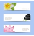 Set of card in spa style vector image vector image