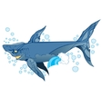 wounded shark marine mammal vector image vector image