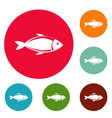 fish icons circle set vector image