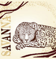 savanna background with hand drawn leopard vector image vector image