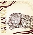 savanna background with hand drawn leopard vector image