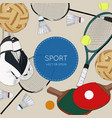 set of colorful sport balls and gaming items vector image
