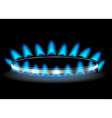 gas stove burner vector image vector image
