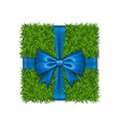 gift box 3d green grass box top view blue ribbon vector image