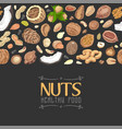 horizontal seamless background with colored nuts vector image vector image
