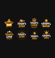 super star set of labels or logo lettering vector image vector image