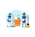 cleaning company using sanitary chemical products vector image vector image
