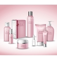 Cosmetic Packages Set vector image vector image