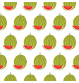 Cute seamless pattern with watermelon vector image