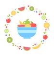 Flat fresh fruits collection circle card vector image vector image