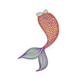 mermaid tail cartoon vector image