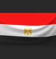 waving national flag of iraq vector image vector image