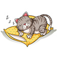 Cat sleeping above the pillow vector image vector image