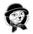 color set of elegant cat woman face vector image vector image