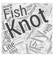 Fly Fishing Knots Word Cloud Concept vector image vector image