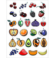 fruits and berry icons vector image vector image
