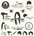 Hair Salon Labels and Icons vector image vector image