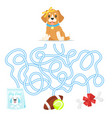 maze or labyrinth for children vector image vector image