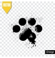 Paw print animal vector image