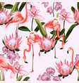 pink flamingo and exotic orchid protea flowers vector image vector image