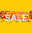 a bright orange banner gold autumn woods vector image
