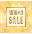 autumn sale banner with gold frame and autumn vector image