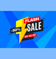 flash sale promotion banner advertising vector image