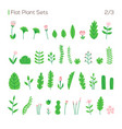 set different leaves and plants in a flat vector image vector image