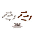spice collection clove seed hand drawn vector image vector image