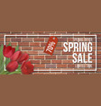 spring sale frame red brick red tulip vector image