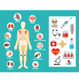 anatomy flat icon set vector image