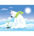 Bear on arctic sunny landscape Greeting card vector image