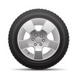 car tire radial wheel metal alloy on isolated vector image