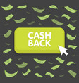 Cash back button concept dollar money rain