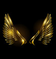 golden wings on black background vector image