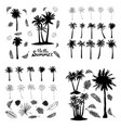 palm tropical tree set icons black silhouette vector image vector image