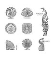 peacock collection ethnic style sketch for your vector image vector image
