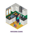 Professional cleaning isometric