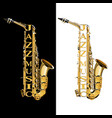 saxophone in the section vector image vector image